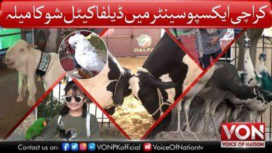 Karachi Expo Center Cattle Exhibition 2021 | Dalfa Cattle Show 2021 | Voice of Nation