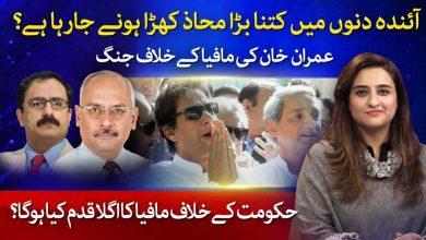 PM Imran khan War Against Mafia | Jami Chandio | Farooq Hameed Khan | Voice of Nation