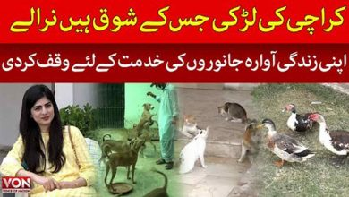 Pet Lover | Karachi | Young Girl Dedicated Her Life to Stray Animals | Exclusive | Voice of Nation